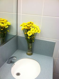 BWI Mens Room Flowers final