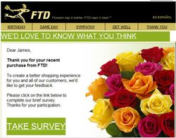 FTD Survey